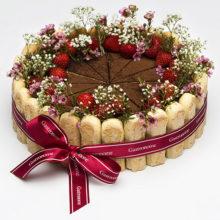 Tortes kūkas